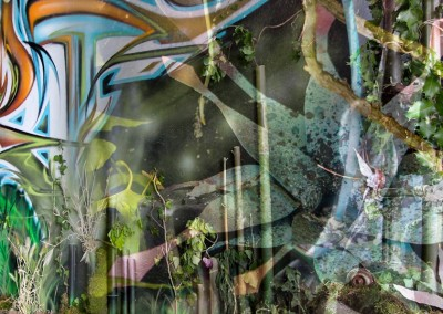 Graffiti Street art Exposition Mixture graffiti végétale à Aix les Bains en 2015