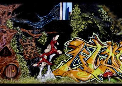 Graffiti Street art Vice SVK 065 - Zert B2C 065 - Swol LPC - Teas LGS - Rems LPC 2008 Carros (06)