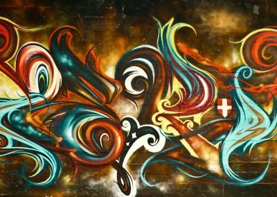 Graffiti Street art Zert en 2014 à Chambéry (73)